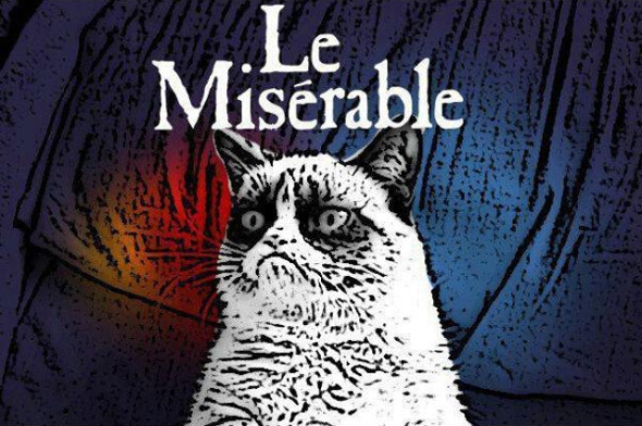 Les Miserable grumpy cat